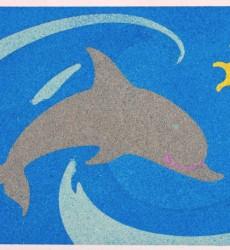 Dolphin Image Resized